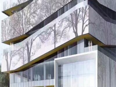 艺术冲孔铝单板幕墙商场艺术外墙铝单板